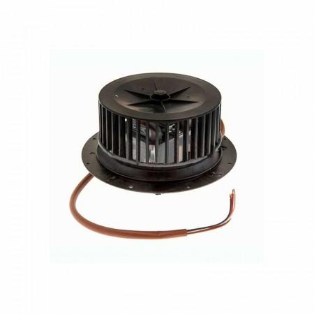 Motor campana extractora